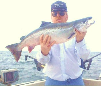 Atlanltic salmon from Lake Ontario